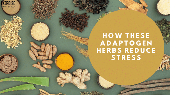 How These Adaptogen Herbs Reduce Stress